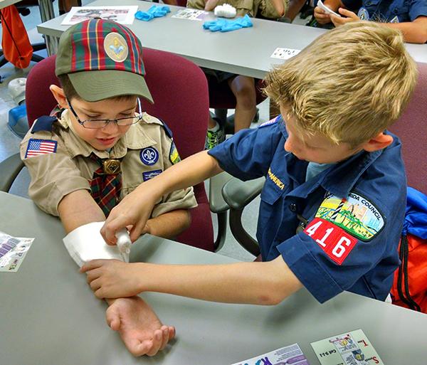 Cub Scouts 2a