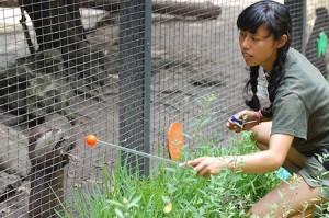 zookeeper-photo