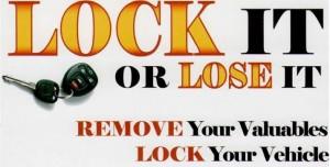 Lock it or Lose It2