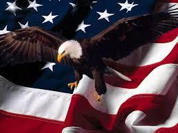 vet eagle