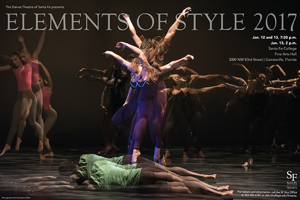Elements of Style poster. Photographic Art by Suzanna Mars