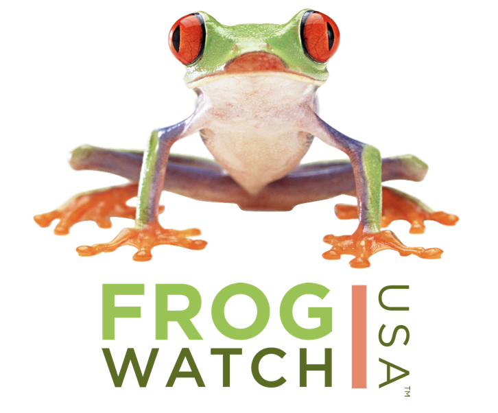 FrogWatch USA logo - a picture of a frog standing over the words Frog Watch