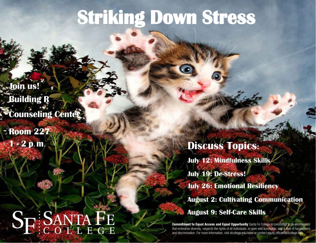 Striking Down Stress Poster with a kitten jumping toward the camera and the date of the upcoming July 19 event