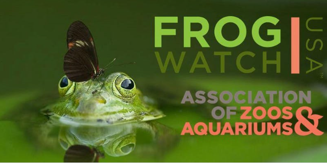 Frogwatch USA - picture of a frog with a butterly resting on the frogs head. The words Frog Watch USA, Association of Zoos and aquariums is on the side of the image.